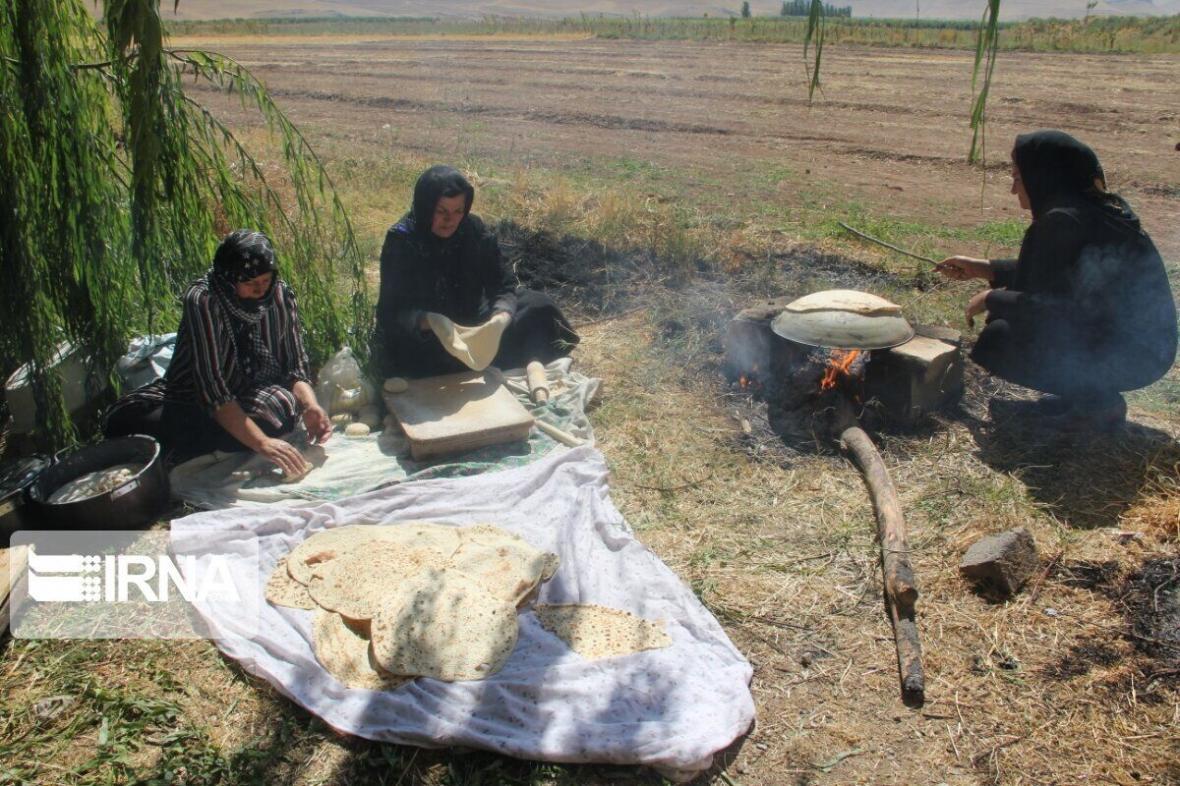 خبرنگاران بیش از 36 درصد روستاییان شیروان بیمه ندارند